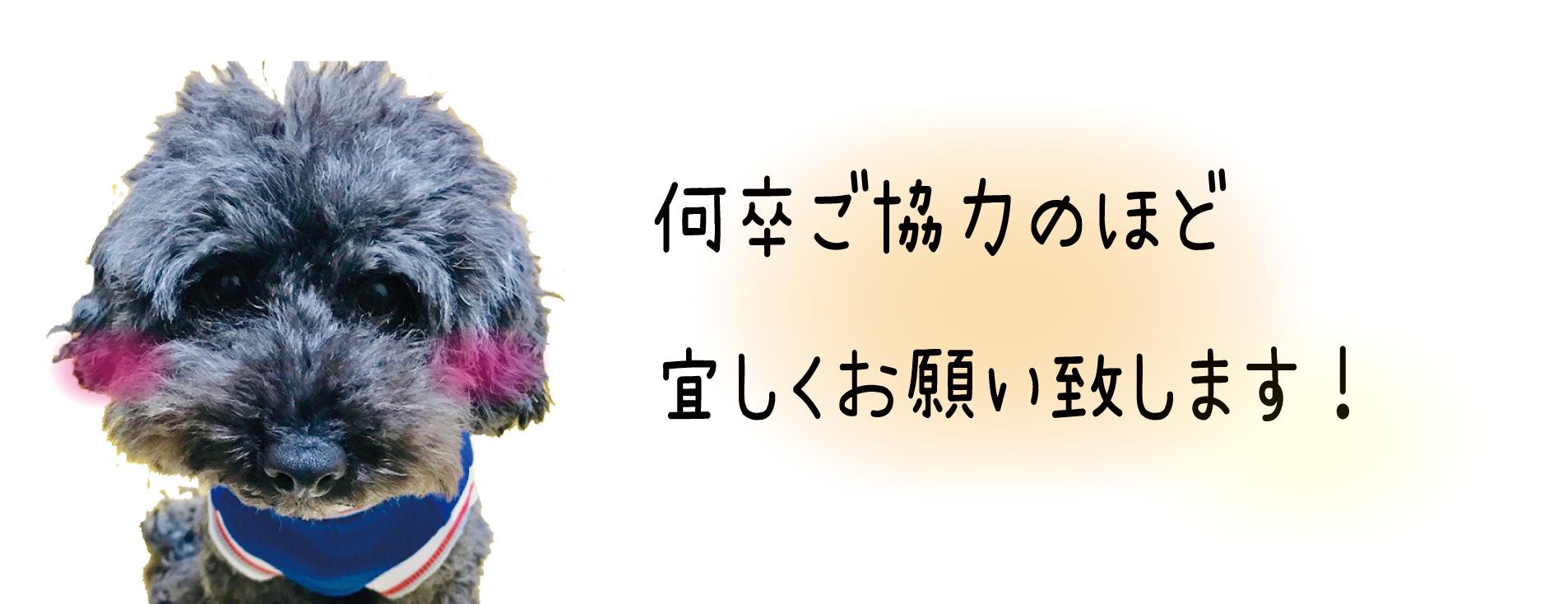 恋jpg_アートボード 1